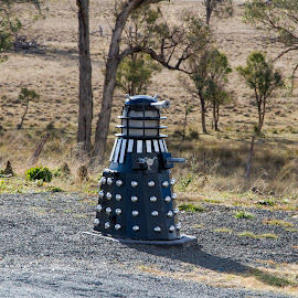 You have mail..... by Bob Howard - Buildings & Architecture Other Exteriors ( darlek, letterbox, australia, nsw, landscape, mailbox )