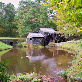blue ridge mill by Delores Mills - Landscapes Travel ( grist mill, reflections, pond, antique )