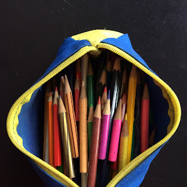 color pencils by Mary Yeo - Artistic Objects Other Objects