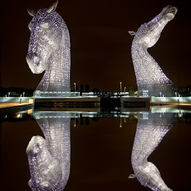 Kelpies Reflection by Wendy Milne - Buildings & Architecture Statues & Monuments ( statue, reflection, kelpies, horses, purple, night )