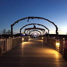 Bridge at night. by Laddawan Donohue - City,  Street & Park  Amusement Parks ( holiday, decoration, bridge at night, line )