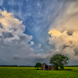 We Need Each Other by KIN WAH WONG - Landscapes Cloud Formations ( clouds, old hut, need each other, paddy fields, help each other, scenery, landscape, 2 trees, survival )