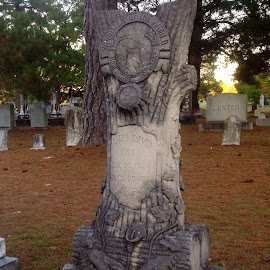 Tree carved for a grave stone by Terry Linton - Artistic Objects Other Objects (  )