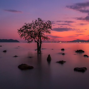 by Charliemagne Unggay - Landscapes Waterscapes (  )
