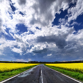 Hungarian skies pt.168. by Zsolt Zsigmond - Transportation Roads ( clouds, sky, blue, canola, yellow, road, panorama )