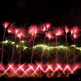 Festival of Fireworks 1 by Katie Munson - News & Events Entertainment