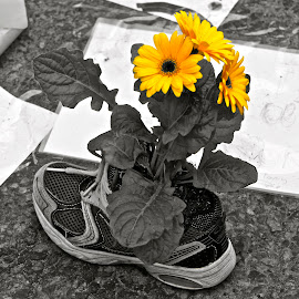Boston Marathon Memorial by Alexis Picheny - News & Events US Events ( memorial, boston, bostonmarathon, sneaker, flowers, shoe, marathon )