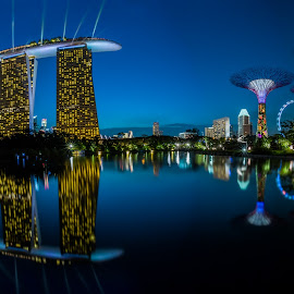 City Wonder by Goh Samuel - City,  Street & Park  City Parks ( flyer, reflection, garden by the bay, blue, supertrees, marina bay sand, hour )