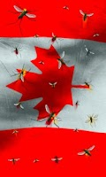Screenshot of Canada flag free livewallpaper