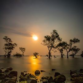 together by Rony Tjayana - Landscapes Sunsets & Sunrises
