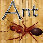 Ant Smasher Game icon