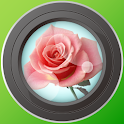 FlowerNote icon