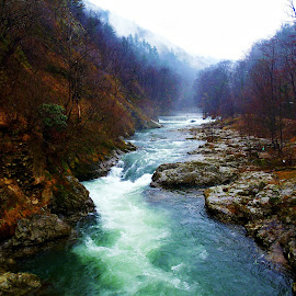 Mountain river by Suzana Jovanović - Landscapes Forests ( mountain, nature, fog, romania, forest, landscape, river,  )