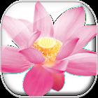 Huna Manifestation Prayer icon