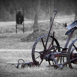 The Plow by Paul Mays - Artistic Objects Other Objects ( tool, plows, historic, farming, kentucky,  )