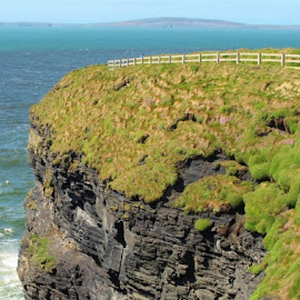 Ballybunnion Cliffs by Julie Kendall - Novices Only Landscapes ( ireland, seabirds, cliff, ballybunnion, cliff walk, path, ocean, shannon estuary, kerry, beach, seascape )