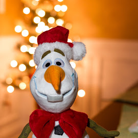 Olaf by R Jay Prusik - Artistic Objects Toys ( olaf, xmas, frozen, bokeh,  )