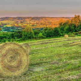 Hilltop View by Barton Bishop - Landscapes Mountains & Hills ( southern, hay, hilltop, tennessee, haystack, landscape, stack )