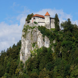Bled castle by Igor Gruber - Buildings & Architecture Public & Historical