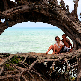 the love tree by Francisco Diniz - People Couples