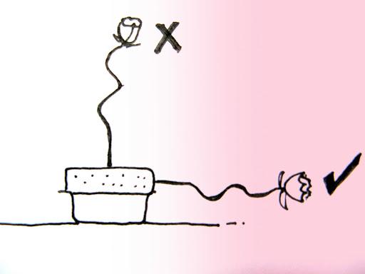 Diagram 1 - Curvy stem