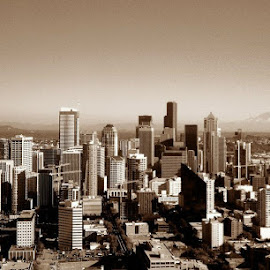 Seattle in Sepia by Tara Bauman - City,  Street & Park  Skylines