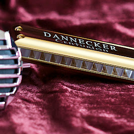Dannecker Centurion Gold on Velvet by Margaret Gorman - Artistic Objects Musical Instruments ( blues harp, dannecker, gold, velvet, harmonica )