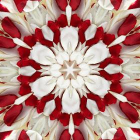 tuxpi.com.1405611132.jpg