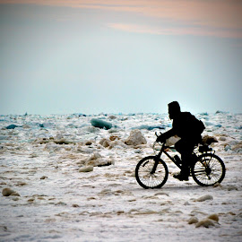 Spring Fever on Lake Michigan by Trixie Brown - Sports & Fitness Cycling
