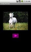 Screenshot of Lovely horses
