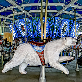 Arctic Circle by Gary Ambessi - City,  Street & Park  Amusement Parks