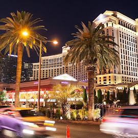 Las Vegas by Brent Gudenschwager - City,  Street & Park  Street Scenes ( caesars palace, cars, buildings, palm trees, night, city )