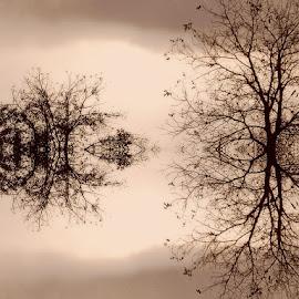 by Ksenija Glavak - Digital Art Abstract