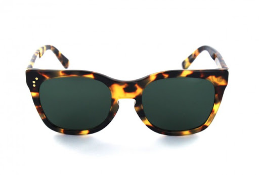 Tortoise shell, women's sunglasses - Shauns Tweed