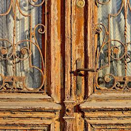 Door by Iulia Breuer - Artistic Objects Other Objects ( door,  )