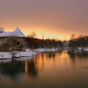 Sun sets over the river Krka by Silva Predalič - Landscapes Sunsets & Sunrises ( water, ducks, river krka, nikon d7100, otočec, winter, sunset, snow, slovenia, trees, castle, color tones, evening,  )