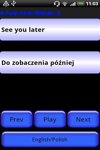 Pocket Polyglot Polish