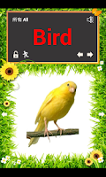 Screenshot of Kids English Flash Card