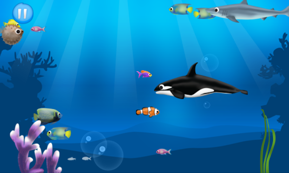 Best hungry fish apk 2 0 free arcade apps for android for Hungry fish game