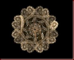 Apophysis-napperon