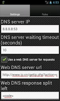 Screenshot of DNS Server