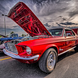 Red Mustang by Ron Meyers - Transportation Automobiles