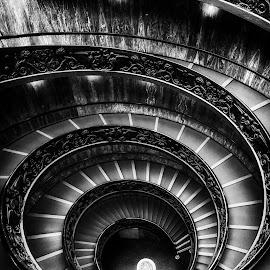 Solemness by Aaron Choi - Buildings & Architecture Public & Historical ( famous, europe, italian, solemn, black and white, travel, architecture, scala, king, photography, stairs, musei, empty, light, italy, bramante, double helix, architectural detail, tourism, museum, vatican, spiral, vatica, photo, roma, european, rome, staircase, popular, aaronchoi )