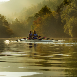 Rowing on golden river by Stjepan Jozepović - Sports & Fitness Watersports