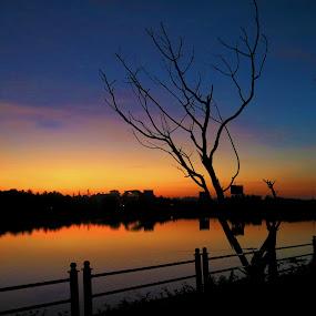 golden hour at park by Praveen Premkumar - City,  Street & Park  City Parks ( calm, park, golden hour,  )