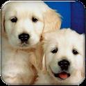 Puppy Go launcher theme