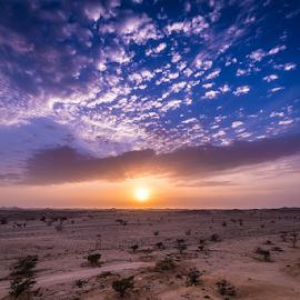 The blue hour in desert  by Babar Swaleheen - Landscapes Deserts ( d800e, desert, oman, blue hour, sunset, nikon )