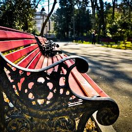 by Eduard Andrica - City,  Street & Park  City Parks