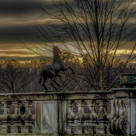 Prancing horse by Bojan Bilas - Buildings & Architecture Statues & Monuments ( sweden, statue, stockholm, hdr, monument, architecture )