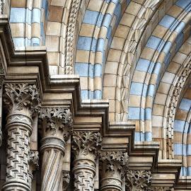 NHM portico detail by Almas Bavcic - Buildings & Architecture Architectural Detail